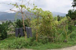 Nepal-2017-Dag-19-35